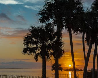 Art Print of Sunrise at Indian River through the Palms
