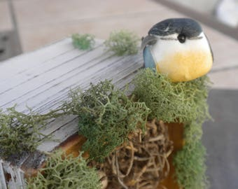 Bird Nest Decoration Garden Theme Shadow Box Nursery Decor