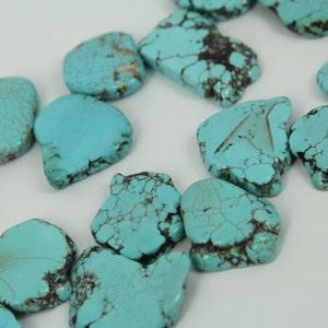 Howlite Vs Turquoise