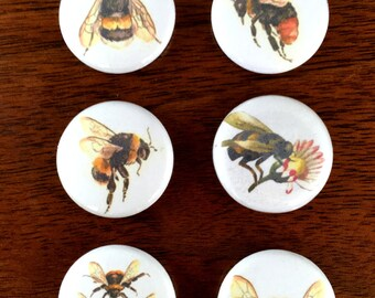 """Vintage Bees 1"""" pin back Button and Magnet set of 6"""