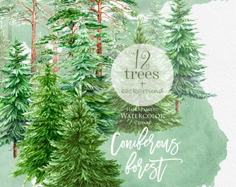 Watercolor Clipart Spruce, Pine, Conifer trees, Forest, wood, landscape, frame, quote, hand painted, greeting card, diy clip art, christmas