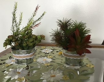 Small Tin Pail Succulents. Each sold separately