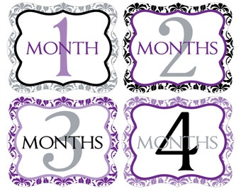 12 Monthly Baby Milestone Waterproof Glossy Stickers - Die Cut Shape - Just Born - Newborn - Weekly stickers available - Design M020-03