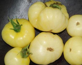 Heirloom Tomato White Wonder Vegetable Seed Organic Garden Non Gmo Beefsteak