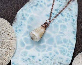 Large Seashell Necklace
