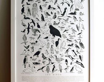 100 Illustrated Birds, Letterpress Art Print