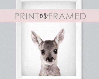 Lil' Darlings 11x14 Deer Print | Baby Reindeer | Cute | Woodland Animals | Farm Animals | Black + White | Photography | Modern Nursery