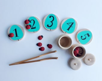 Counting Game, Busy bag, Montessori Toy, Wooden Discs, Montessori, Wooden Toy, Ladybug Toy, Ladybird Toy, Educational Toy, Math Toy, Waldorf