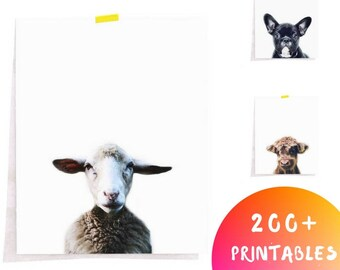 Sheep Animal Print, Farmhouse Animal Print, Minimalist Animal Decor, Farmhouse Nursery Print,Modern Farmhouse Animal,Sheep Animal Wall Decor