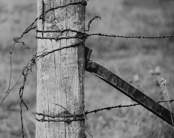 Old fence - nature photography- black and white fence - b & w - old fence post - Original fine art photography prints - FREE Shipping
