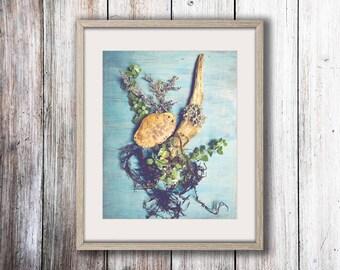 Ocean Art - Blue Wall Art - Sea Finds - Still Life Photograph - Nautical Wall Art - Nature Art Print - Beach House Decor - Driftwood
