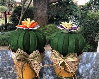 Door felt vase with cactus felt Mother's pillow