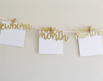 Pink And Gold First Birthday Decorations. Pink and gold 1st birthday 1st birthday decor Milestone Photo Display Monthly Photo Banner