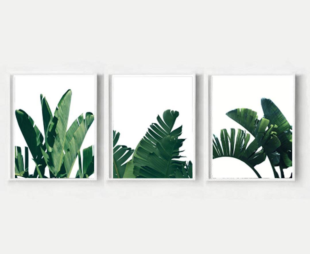 Conjunto De 3 Estampas Hojas De Pl Tano Tr Ptico Arte De # Muebles Hoja De Banano