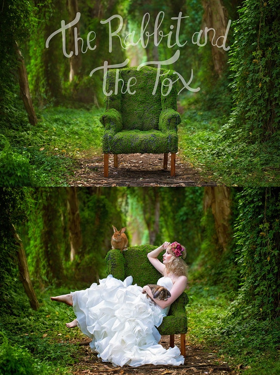 Mossy chair forest ivy vine garden background backdrop digital