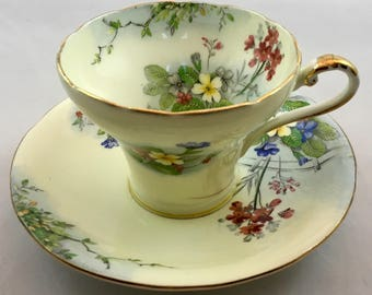 Aynsley Vintage Corset  Floral Scenic Teacup and Saucer