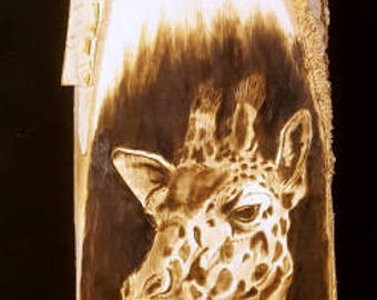 Wood Burning of a Giraffe