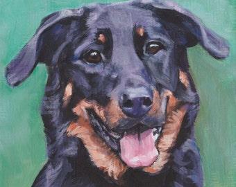 Beauceron dog portrait CANVAS print of LA Shepard painting 8x8 dog art