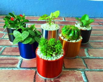 Colorful Garden Pots For Plans Cactus Planter Modern Elegant Design(Chrome Color)