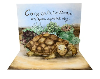 3D Pop Up Card - Desert Tortoise Congratulations