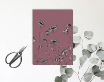 Ammi Majus - Vieux violet - Carte postale illustrée - dessin à la main - tirage numérique en couleur - monocotylédone