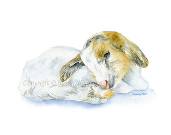 Baby Goat Watercolor Painting - 10 x 8 - Giclee Print - Nursery Art - Farm Animal - 11 x 8.5