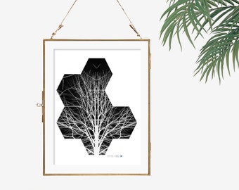 Modern art black and white photography bare tree photography hexagon art photograph print Rorschach art geometric art office decor