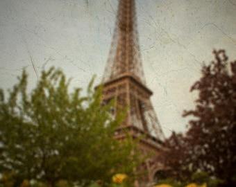 Eiffel Tower Photo, Paris Photography Yellow Roses Photograph Garden France Neutral Colors Wall Art par95
