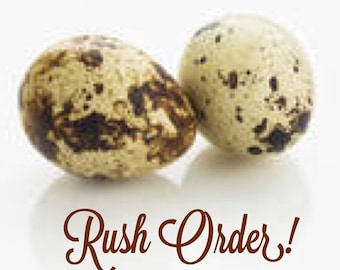 Rush Order Production Upgrade - Ships Within 24 Hrs!