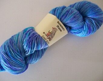 Eman Sock.  100gm hand-dyed blue and purple  fingering weight yarn.  Parrot