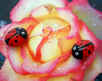SHIPS FREE-Ladybug painted pet rock Mothers Day gifts spring fairy garden DIY terrarium lucky ladybird beetle ruby red gift under 20 for her