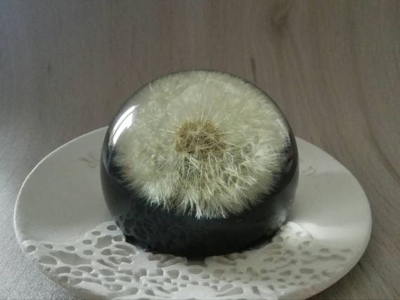 Housewarming gift Paperweight Dandelion paper weight sphere Unique gift Real dandelion head Make a wish Desk Bosslady gift for Father Bride