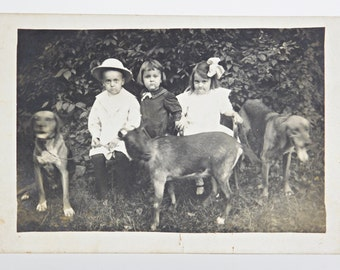 Children with a Goat and Hounds Postcard, Circa 1904-10, Real Photo Postcard, RPPC, Gelatin Silver Print Photo