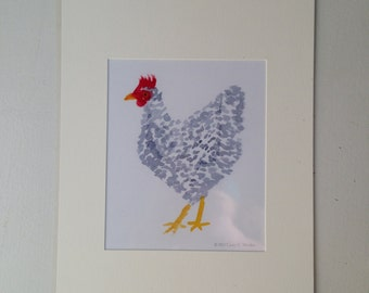 Barred Rock Chicken Matted Print