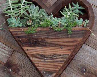 Large Heart Succulent Planter