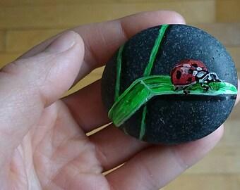 Ladybird stone art painted rock.  painted rock. painted stone Meditation stone.botanical. paperwaight.rock animal.TWOPI1DB