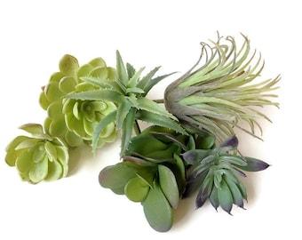 Faux succulents collection, succulent, succulent plants, artificial succulent, succulent, succulent terrarium, succulent planter, air plant