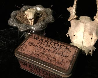 Antique Tin Warlock Stash Can Box at Gothic Rose Antiques