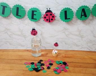 Little Ladybug Party Kit