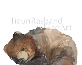 Sleeping Baby Bear-Original Watercolor Fine Art Print, nursery decor, animal art print, wall art, watercolor, bear painting