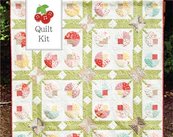 Quilt Kit - Strawberry Fields Revisited and Flower Patch Quilt Kit - FREE SHIPPING - Flower Patch Quilt Pattern - SFFPQK