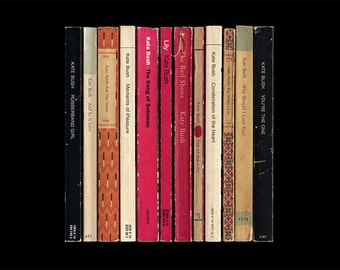 Kate Bush The Red Shoes Album As Penguin Books Poster Print Literary Print