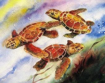 Baby Sea Turtles Watercolor Painting Art Print by Fish artist Barry Singer 8X10 Best Coastal Beach Decor