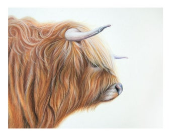 Highland Cow Painting/Fine Art Print