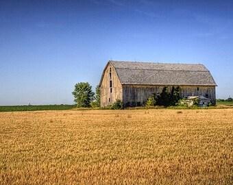 Barn Decor, Barn Art, Farmhouse Decor, Country Decor, Midwest Art, Home Decor, Large Wall Art, Wheat Field Barn