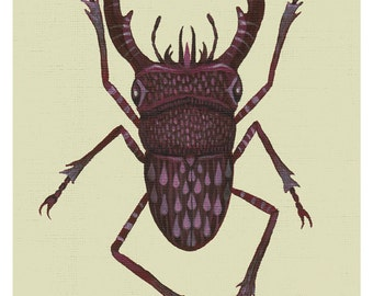 Stag beetle - A4 art print