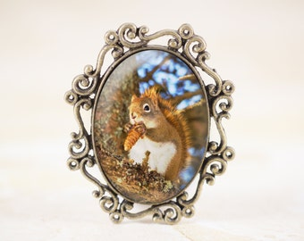 Red Squirrel Brooch - Woodland Animal Jewelry, Squirrel Jewelry Broach, Forest Animal Brooch, Wildlife Photography Jewelry Pin
