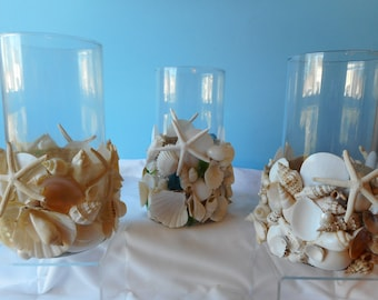 Sea Shell Sea Glass Candle Holder- Sea Shell Vase- Shell Hurricane Holder-Beach Decor