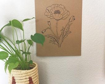 Illustrated poppy botanical print