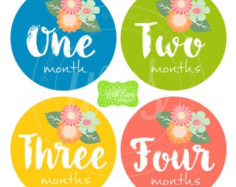 Flower Baby Monthly Stickers - Baby Bodysuit Stickers -  Monthly Baby Stickers - Girl Monthly Stickers - 051